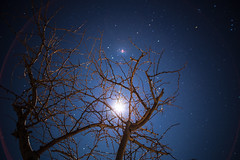 Moonflare (TheCineSol) Tags: full frame fullframe nature night nighttime time star stars moon sky skyscape scape landscape land tree trees constellation constellations flare long exposure big stop stopper shutter delayed earth porn earthporn space spaceporn skyporn starporn canon 6 d 6d eos dslr