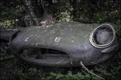Abandoned Jaguar E-Type (ducatidave60) Tags: fuji fujifilm fujinonxf23mmf14 fujixt1 abandoned decay dereliction urbandecay urbex
