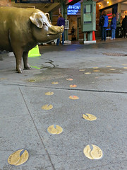 Follow the trotters to Pike Place Market (Ruth and Dave) Tags: pikeplacemarket pikeplace market seattle rachelthepig rachelthemarketpig rachel pig statue piggybank brass trotters prints ground