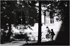 walking in the evening (maxmedl) Tags: münchen munich frau woman femme mujer schatten shadow sombra evening abend tarde soirée bw bn sw blackandwhite scharzweiss monochrome handy baum fenster street streetphotography