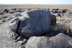Petorglyph at Grimes point in NV-10 10-24-13 (lamsongf) Tags: rockart petroglyph nativeamerican americanindian nevada grimespoint