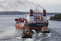 Morning action (Per-Karlsson) Tags: tugs tanker stenaperros stena vessel vessels svitzer maritime maritimeindustry shipping sweden swedishwestcoast
