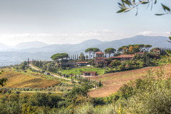 Weingut (id_4862) Tags: toscana berge bäume felder natur zypressen weingut