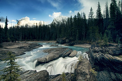 The Wild Horse (gwendolyn.allsop) Tags: river water blue kicking horse canada yoho national park forest trees nature wild bridge rushing cold d5200