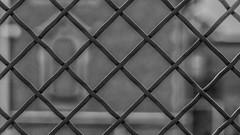see through (HFF !) (ralfkai41) Tags: rectangle viereck geometrical geometrisch geometrie geometry happyfancefriday schwarzweis zaun hff sw bw texture uster monochrom fence blackwhite