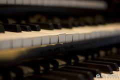 """adam zyworonek fotografia lubuskie zagan zielona gora • <a style=""""font-size:0.8em;"""" href=""""http://www.flickr.com/photos/146179823@N02/34148743913/"""" target=""""_blank"""">View on Flickr</a>"""