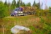 Camp River (jr-transport) Tags: kenworth w900 logging