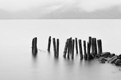 Chuzenji-ko (Myajima) Tags: japon japan 日本 nikko chuzenji chuzeniko lac lake eau water bois wood brume mist expositionlongue longexposure