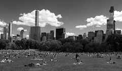 Sheep Meadow _ bw (Joe Josephs: 3,166,284 views - thank you) Tags: nyc newyorkcity travel travelphotography joejosephs ©joejosephs2017 blackandwhitephotography blackandwhite centralpark centralparknewyork landscapephotography landscapes urbanparks urbanlandscapes skyline people sheepmeadow tranquil peaceful relaxing sunny
