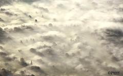 Good morning London (1) (Mahmoud R Maheri) Tags: london fog arealview england trees landscape uk lowclouds shadows airplane morning