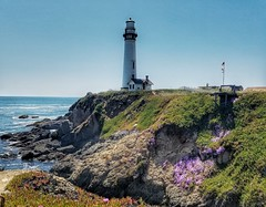 Pigeon Point Lighthouse - Cliff (Palm Photography) Tags: pigeonpoint lighthouse california pacificocean cliff flowers