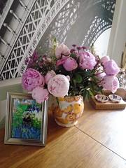 Flo Yorkie Poo Dog and Flowers (@oakhamuk) Tags: flo yorkiepoo dog flowers
