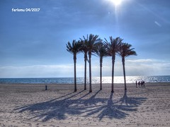 Almería. Roquetas. 02 Playa (ferlomu) Tags: almeria andalucia arbol ferlomu playa