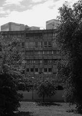 Urban walk 20 May 2017: Lewisham to Mile End 52 (neil mp) Tags: london towerhamlets poplar e14 robinhoodgardens alisonandpetersmithson smithsons architecture brutalism modernism concrete bétonbrut c20 twentiethcenturysociety housing blackandwhite bnw monochrome