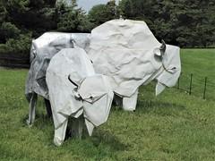 "Lisle, IL, Morton Arboretum, Origami Sculpture, ""White Bison"" (Artist: Kevin Box) (Mary Warren (8.5+ Million Views)) Tags: lisleil mortonarboretum art sculpture origami metal kevinbox buffaloes white bison"