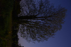 SPC_2266 (seansverige) Tags: moonlight naturallightphotography nocturnalphotography longexposure
