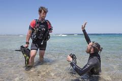 22 06a (KnyazevDA) Tags: diver disability disabled diving undersea padi paraplegia paraplegic amputee egypt handicapped wheelchair aowd sea travel scuba underwater redsea