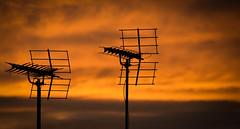 evening skies 5 (samuel.t18) Tags: evening skies colourful colour orange yellow clouds sunset tsamchar nikon d3200 samuelt18 silouettes dusk nwn