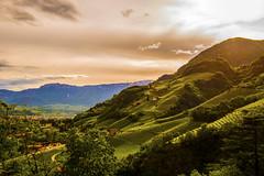 Bozano (Desire Wu) Tags: bozano bozan italy europe südtirol landscape altoadige southtyrol beauty summer travel old yellow nikon dslr