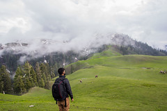 Ahmad (mimalkera) Tags: kaghanvalley naran kaghan shogran siripaye payemeadows lakesaifulmalook travelpakistan travelbeautifulpakistan travel wanderlust