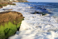 IMG_2765 (philip.langelier) Tags: canon80d 80d lajolla sandiego san diego ocean waves tamron2875mm tamron 2875mm