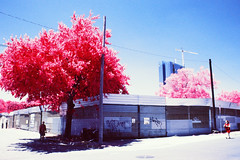 Scrap Metal Yard (infobong) Tags: austin eastaustin colorinfraredfilm colorinfrared infraredfilm infrared