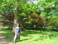 IMG_0496 (steepholm) Tags: haruka cirencester
