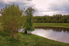 Rain (Unicorn.mod) Tags: 2017 colors rain spring landsape rurallandscape outdoor manual manuallens samyang samyang35mmf14asumc samyangmf35mmf14edasumcae myfocus