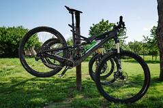 . (Hagbard_) Tags: bike mtb mountainbike trailbike ride enduro czech rychleby sport tour outdoor outside trailriding wood fun life friends beautiful mtbisokay nature photography rychlebskéstezky