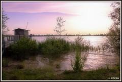 Soir d'été (Les photos de LN) Tags: soir été garonne fleuve estuaire gironde aquitaine carrelet cabane pêche eau rivière nature roseaux ciel couleurs crépuscule