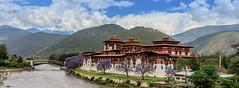 107A1373 (Tarun Chopra) Tags: bhutan gangofduster 2017 canon5dsr photography canoneos5dsr ef24105mmf4lisusm