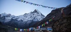 the views from Annapurna Base Camp (Sitoo) Tags: annapurna annapurnabasecamp campobaseannapurna himalaya nepal trek trekking