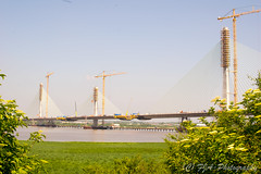 DSC_5469 (fjaphotography.co.uk) Tags: wiggisland nature merseygateway bridge construction