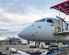 Noses of 2 EMB-175s... (AvgeekJoe) Tags: iflyalaska alaskaair alaskaairlines d5300 dslr erj170200lr erj175 erj175lr embraer embraererj170200lr embraererj175 embraererj175lr internationalairport ksea n175sy n176sy nikon nikond5300 seatac seatacinternational seatacinternationalairport seattle seattletacomainternational seattletacomainternationalairport skywestairlines washington washingtonstate aircraft airplane airport aviation jetliner noseshot plane