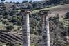 original columns
