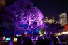 20170531-41-VIvid Light display at Sydney Botanic Gardens (Roger T Wong) Tags: 2017 australia nsw newsouthwales rogertwong sel2470z sony2470 sonya7ii sonyalpha7ii sonyfe2470mmf4zaosscarlzeissvariotessart sonyilce7m2 sydney sydneybotanicalgardens vivid festival illuminated lights night tree