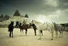 Kapadokya, Turkey (Artun York) Tags: türkiye turkey kapadokya cappadocia horses nature wild göreme goreme canon photography 550d 24mmstm primetime prime lens