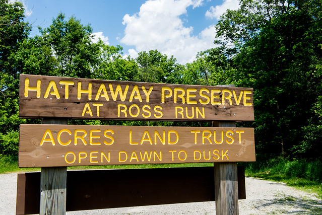 Hathaway Preserve at Ross Run - June 5, 2017