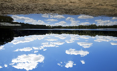 some poets sing ... (ByOtA ...........) Tags: autumn sky clouds fall reflections lake blue layers dreams omar byota canoneosrebelt6i 2016 leaves music classic vivaldi