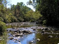 22 Pequest River (megatti) Tags: buttzville newjersey nj pequestriver warrencounty