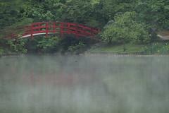 Smoke on the Water (hanley.will) Tags: theartistseyes sarahpdukegardens dukegardens garden dukeuniversity duke