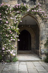 Haddon Hall (TheDavePhotoAlbum) Tags: haddon hall medieval tudor stately home bakewell derbyshire gate entrance roses