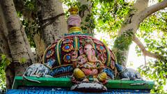 IMG_48620 (Manveer Jarosz) Tags: auroville bharat ganapati ganesha ganpati hindu hindustan india southindia tamilnadu wwoof worldwideopportunitiesonorganicfarms art colorful mandir murti painted rural sculpture temple tree