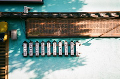 PENTAX ESPIO 115 × FUJIFILM C200 (oi (oichanahcio)) Tags: pentax espio115 fujifilm c200 35mm film filmisnotdead filmcamera filmphotography filmforever filmshooters keepfilmalive believeinfilm analog analogue nofilter noedit ishootfilm istillshootfilm ilovefilm iusefilm tateishi katsushika tokyo japan