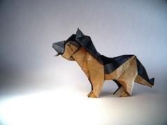 German Shepherd (Pastor Alemán) - Oriol Esteve (Rui.Roda) Tags: origami papiroflexia papierfalten dog chien perro cachorro cão alemão german shepherd pastor alemán oriol esteve