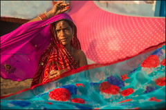 Sari. Kanyakumari (Claire Pismont) Tags: asie asia inde india indedusud indian travel travelphotography tamilnadu pismont portrait pink clairepismont colorful couleur color colour woman viajar voyage