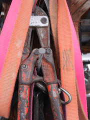 Tools of the trade (lmundy2002) Tags: dogs dogsled dogsledding huskies sleds whitefish olney whitefishmt olneymt montana mt winter wintersports