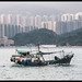 Hong Kong (-Fabrizio-) Tags: nikon d300s hongkong sea water boat architecture buildings lightroom