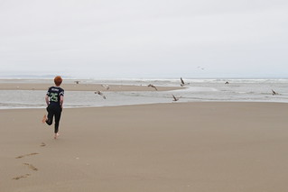 Here Grandpa, let me get the gulls out of your picture