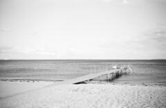 Espergærde Strand (holtelars) Tags: zeiss ikon nettar 5172 6x9 ilford folding camera fpp novaranastigmat 105mm f63 120 fp4plus fp4 120film film analog analogue blackandwhite classicblackwhite denmark seascape landscape larsholte homedevelopment filmforever filmphotography mediumformat monochrome bw xtol beach strand espergærde espergærdestrand